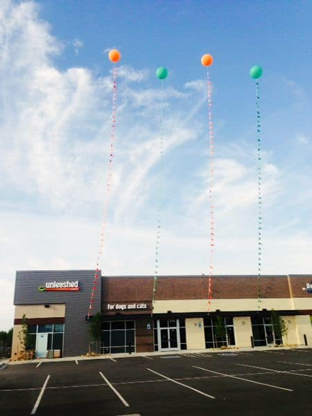 cloudbusters giant helium balloons